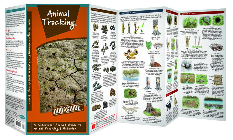 Animal Tracking-Spread hi-res