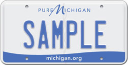 Michigan Standard Plate
