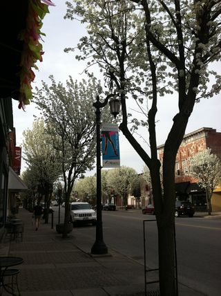 Downtown Sylvania in Spring